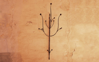 Attaccapanni in ferro ramo